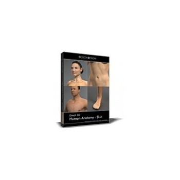 Dosch 3D: Human Anatomy - Skin