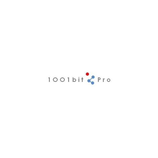 1001bit Pro v2 (EN, WIN/MAC, LIC)