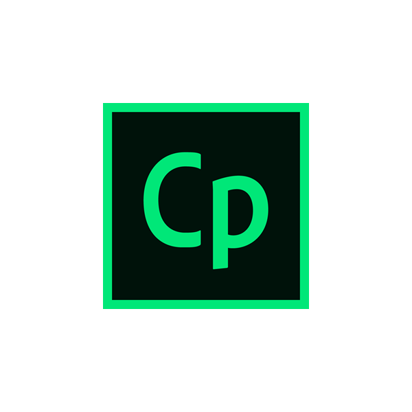 Captivate 2019 v.11 ENG Win/Mac