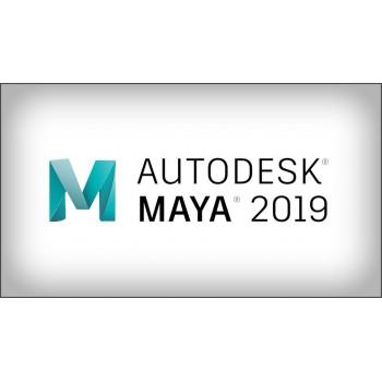 Autodesk Maya LT 2019 Subskrypcja