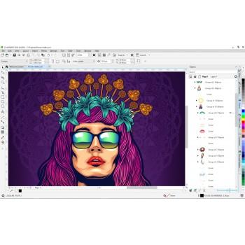 CorelDRAW Graphics Suite 2020 BOX PL