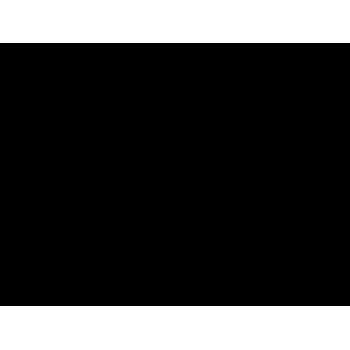 Tablet Graficzny Star G430S