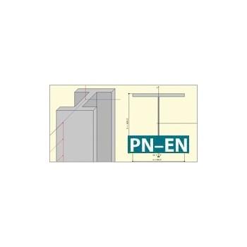 Konstruktor - Słup stalowy Eurokod PN-EN